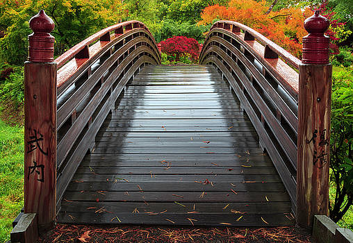 Over the bridge to Fall by Hans Franchesco