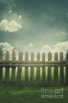 Over the fence by Mythja Photography