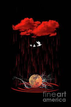 Over the Moon by Barbara Dudzinska