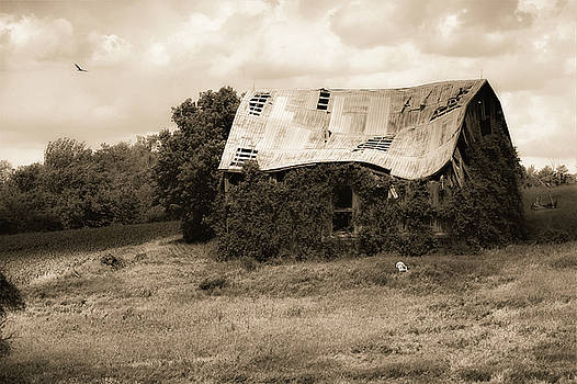 Overgrown Barn by Karl Anderson