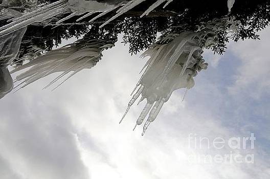 Overhanging Icicles by Sandra Updyke