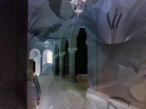 Overlay Arches by Marsha Tudor