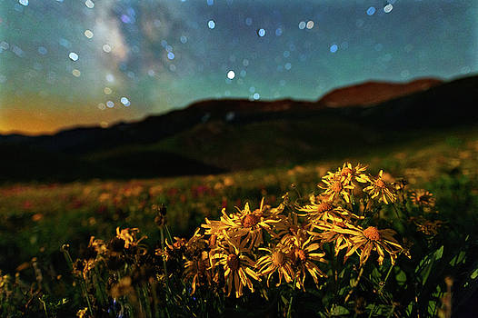 Overnight Beauty On Black Bear Pass by Mike Berenson