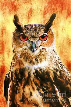 Owl Attitude by Tina LeCour