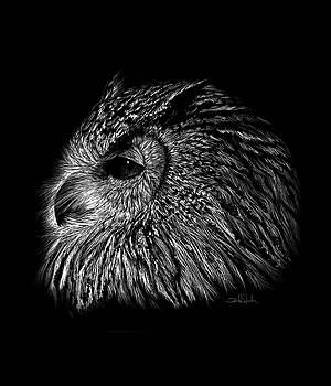Owl Black and White by Isabel Salvador