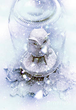 Owl Captive In Winters Frost by Jorgo Photography - Wall Art Gallery