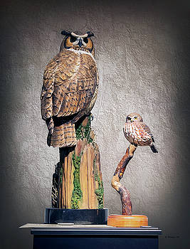 Owl Carvings by Brian Wallace