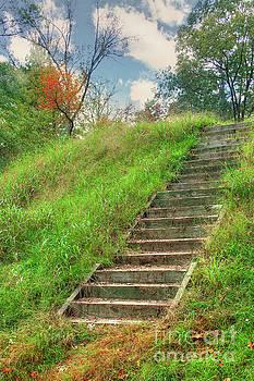 Larry Braun - Owl Creek Mound