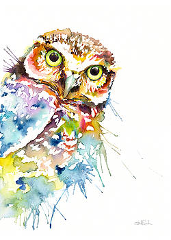 Owl Curious by Isabel Salvador