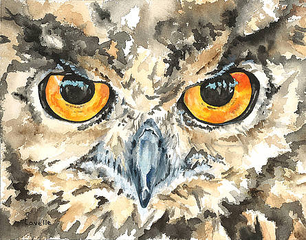 Owl Eyes by Kimberly Lavelle