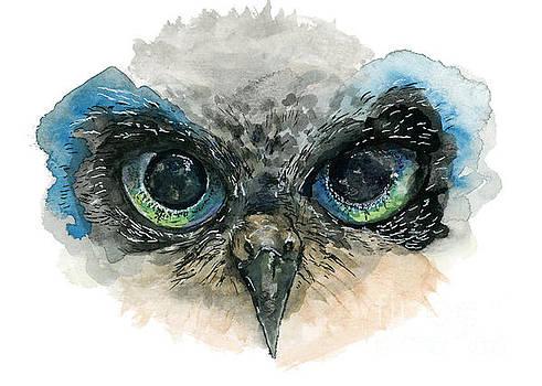 Owl Eyes by Lauren Heller