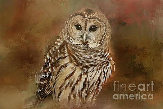 Owl by Geraldine DeBoer