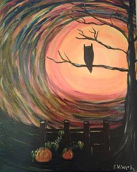 Owl In The Night by Shirley Vinch
