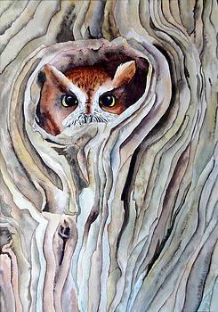Owl by Laurel Best