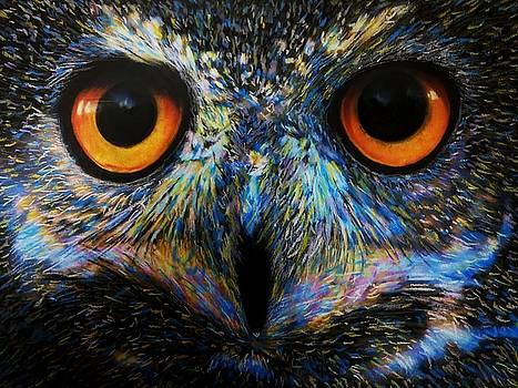 Owl by Mandy Thomas