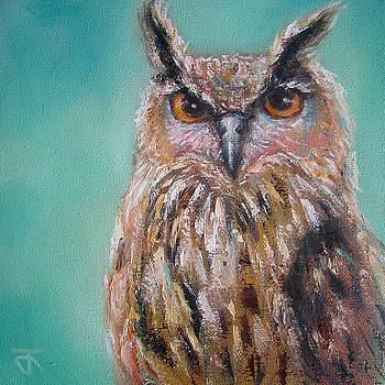 Owl no.5 by Jack No War