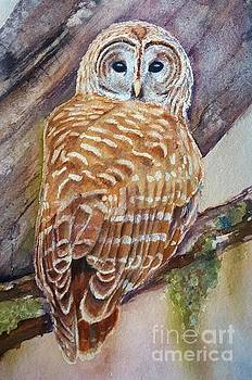 Owl by Patricia Pushaw