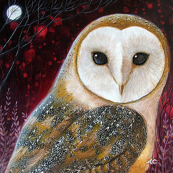 Owl Power Animal by Amanda Clark
