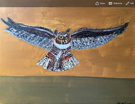Owl by Ramya Sundararajan