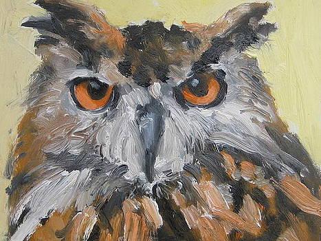 Owl by Susan Jenkins