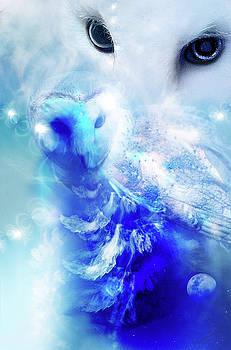 Wendy Slee - Owl Vision
