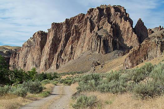 Owyhee Rock Formations by Karen Nitz