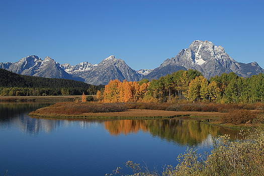 Oxbow Bend by Ann Sullivan