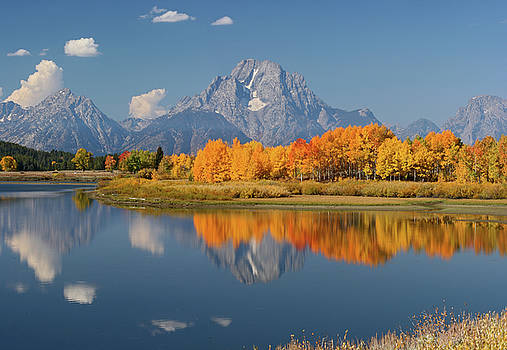 Oxbow Bend Reflection by Wesley Aston