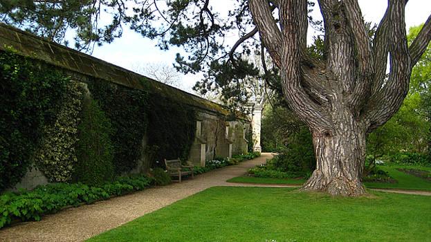 Oxford Park by Joshua Ackerman