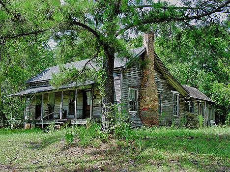 Ozark Alabama Homestead by Frank Feliciano
