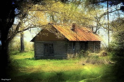 Ozarks Homestead by Wesley Nesbitt
