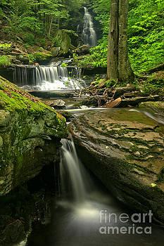 Adam Jewell - Ozone Waterfall Gorge