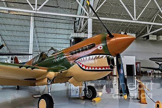 Jon Burch Photography - P-40 Warhawk