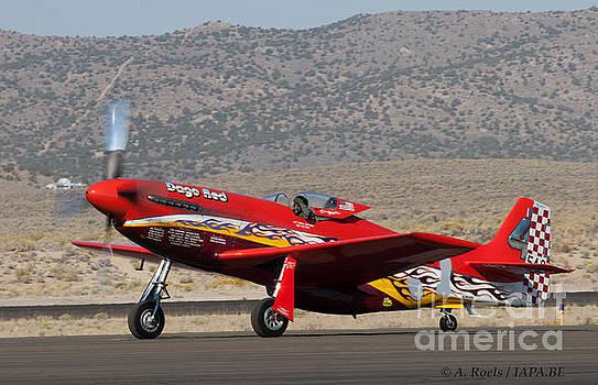P-51 Dago Red  5 time winner of Reno Air Races by Antoine Roels