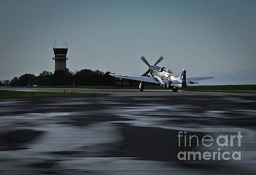 P-51  by Douglas Stucky