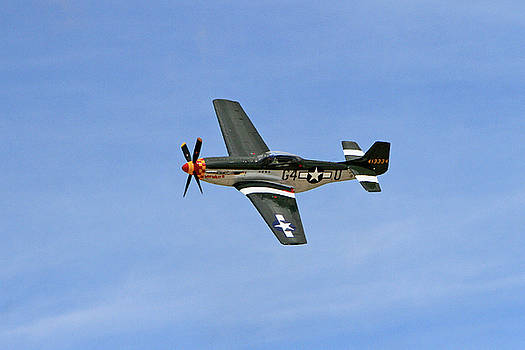 P-51 Flying High by Shoal Hollingsworth