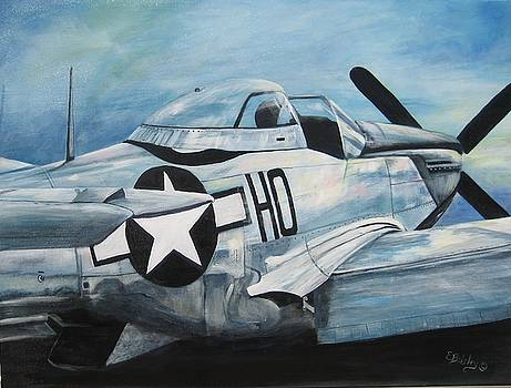 P-51 Mustang by Elaine Balsley