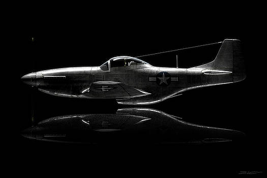 P-51 Mustang Profile by David Collins