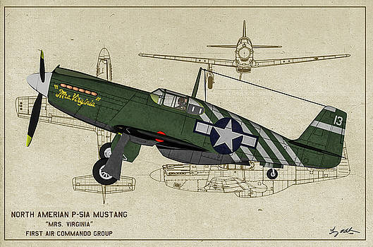 P-51A Mrs Virginia - Profile Art by Tommy Anderson