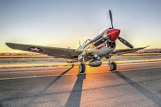 John King - P40 Warhawk at Sonoma