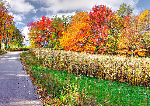 PA Country Roads - Autumn Colorfest No. 1 - Harvest Time - Laurel Highlands, Somerset County by Michael Mazaika