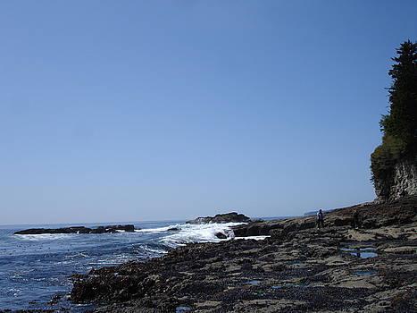 Pacific coast by Glen Frear