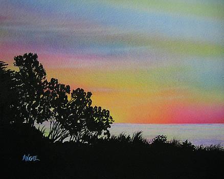 Angie Hamlin - Pacific Coast Sunset 1