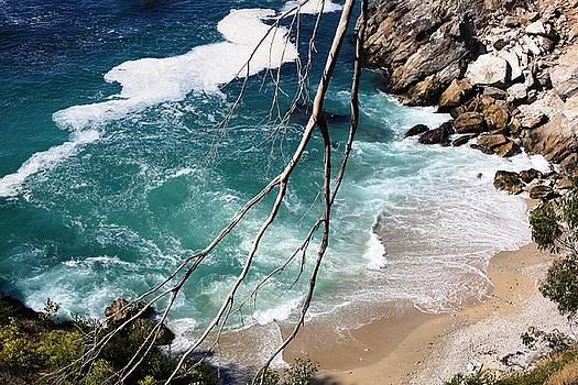 Pacific Coastline  by Victoria  Johns