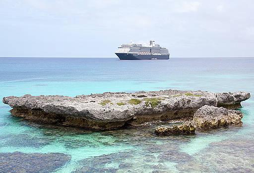 Ramunas Bruzas - Pacific Cruise