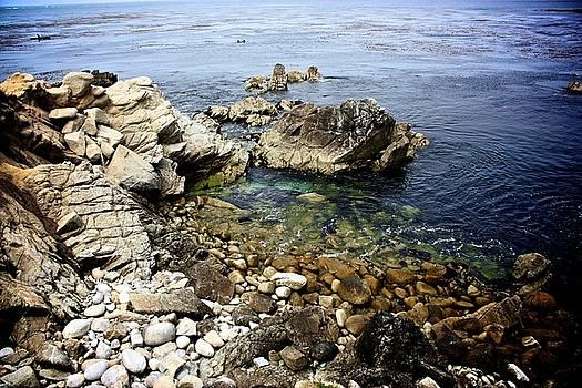 Pacific Grove Coast by KC Moffatt