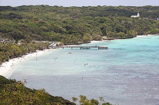 Ramunas Bruzas - Pacific Island Beach