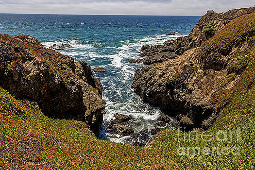 Pacific Ocean Shoreline Bluffs by DJ Laughlin