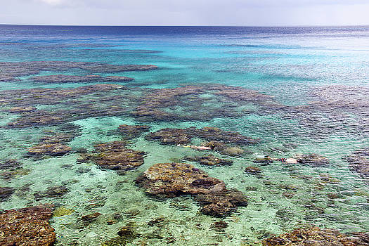 Ramunas Bruzas - Pacific Paradise