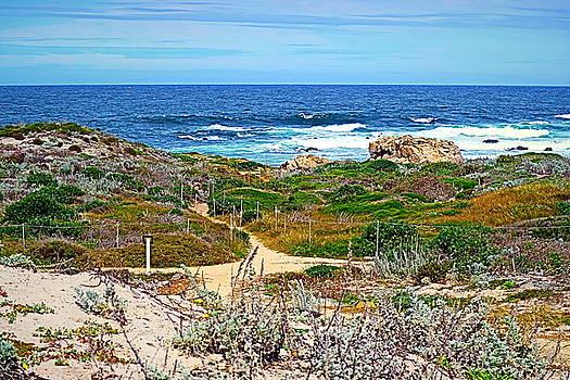 Joyce Dickens - Pacific Pathway